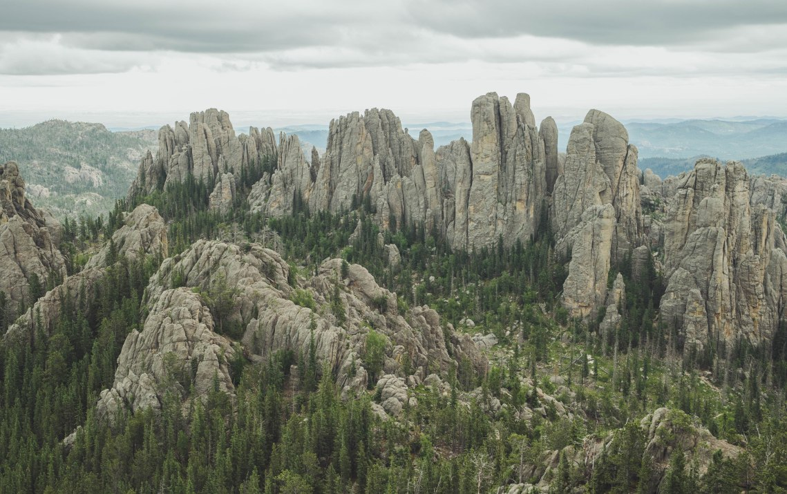 Black Hills - faves-15