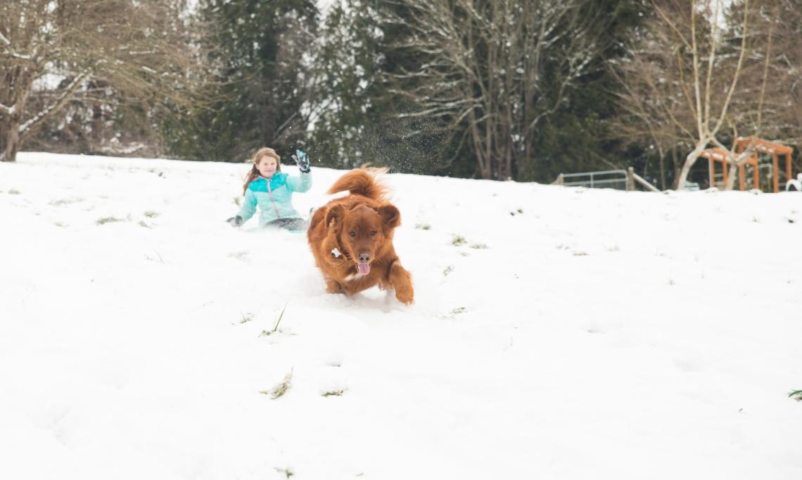 Snow Day-9